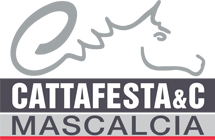 Cattafesta & C. Horseshoes